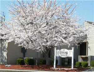 Oak Tree Farms Apartment Homes apartment in Hopkinsville, KY